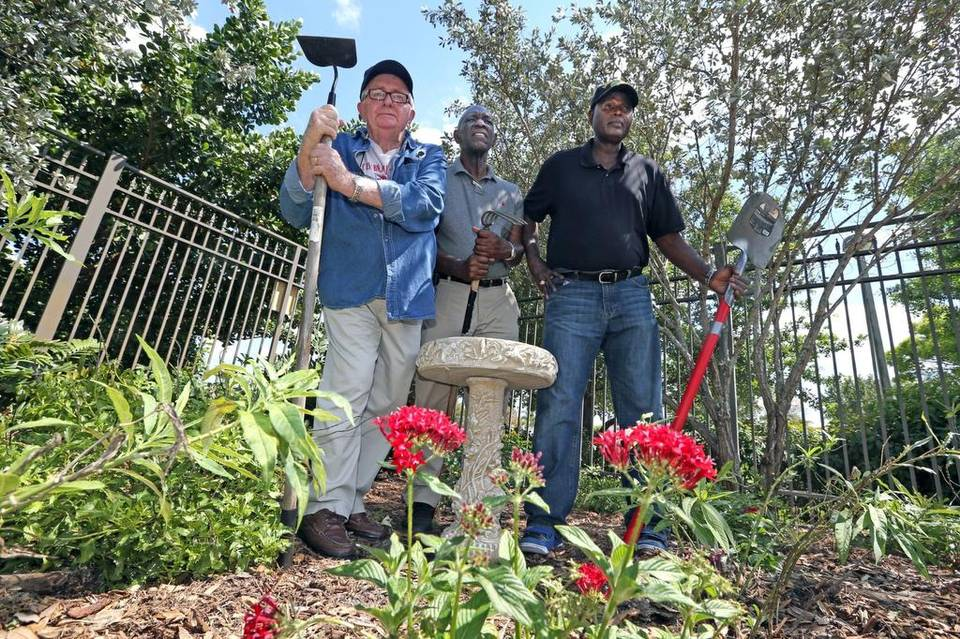 ... Thomas Veterans And Master Gardeners Who Were Instrumental In Getting A Butterfly  Garden Planted On VA Clinic Property In Sunrise. Photo: Miami Herald.